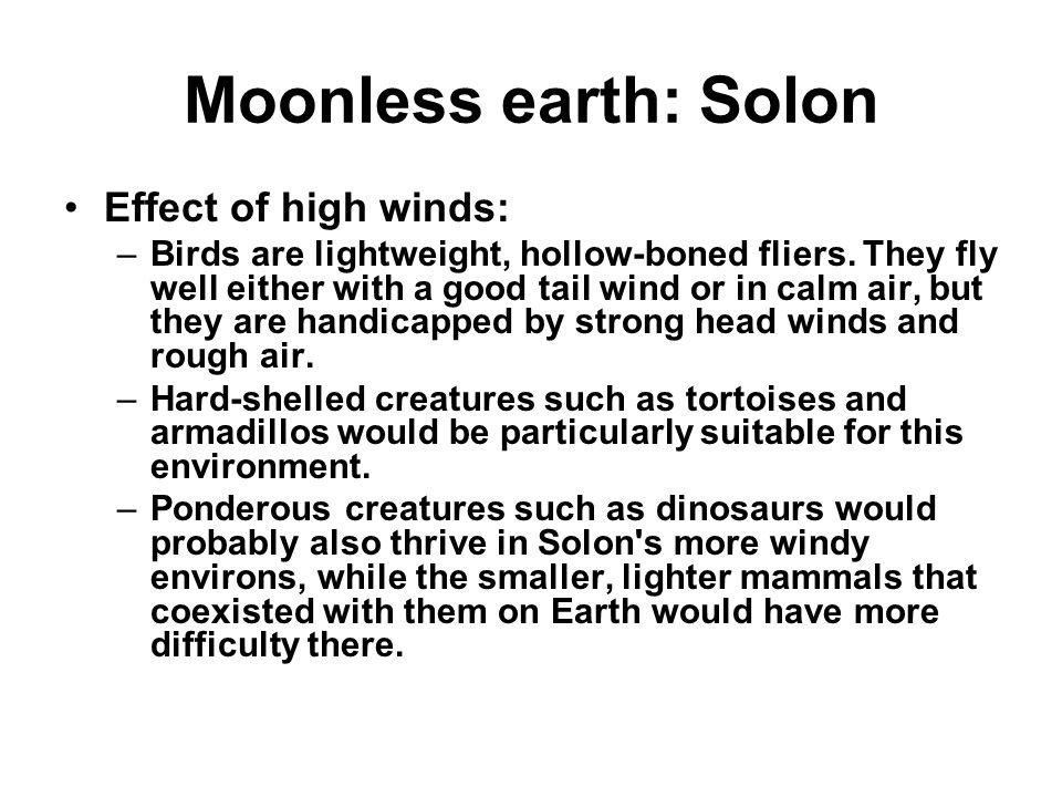 Moonless earth: Solon Effect of high winds: –Birds are lightweight, hollow-boned fliers.