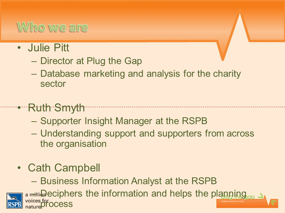Julie Pitt –Director at Plug the Gap –Database marketing and analysis for the charity sector Ruth Smyth –Supporter Insight Manager at the RSPB –Unders