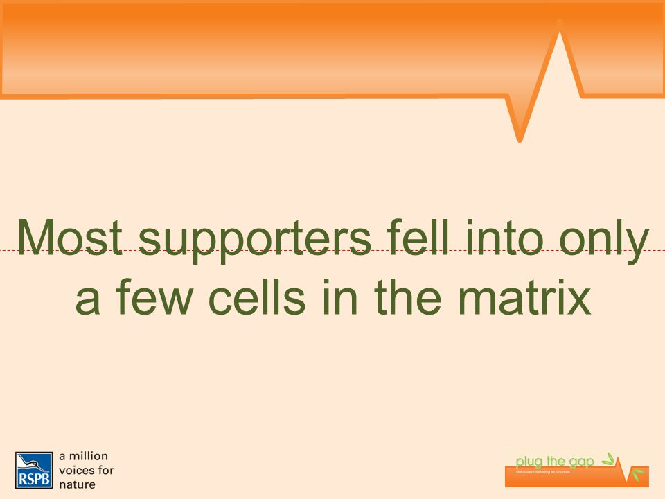 Most supporters fell into only a few cells in the matrix