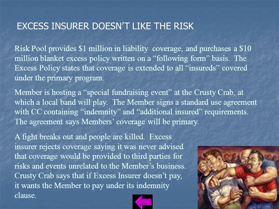 EXCESS INSURER DOESN'T LIKE THE RISK Risk Pool provides $1 million in liability coverage, and purchases a $10 million blanket excess policy written on a following form basis.