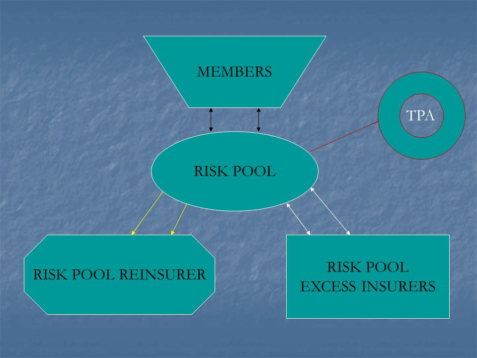 RISK POOL RISK POOL REINSURER RISK POOL EXCESS INSURERS MEMBERS TPA