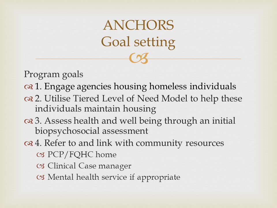  Program goals  1. Engage agencies housing homeless individuals  2. Utilise Tiered Level of Need Model to help these individuals maintain housing 