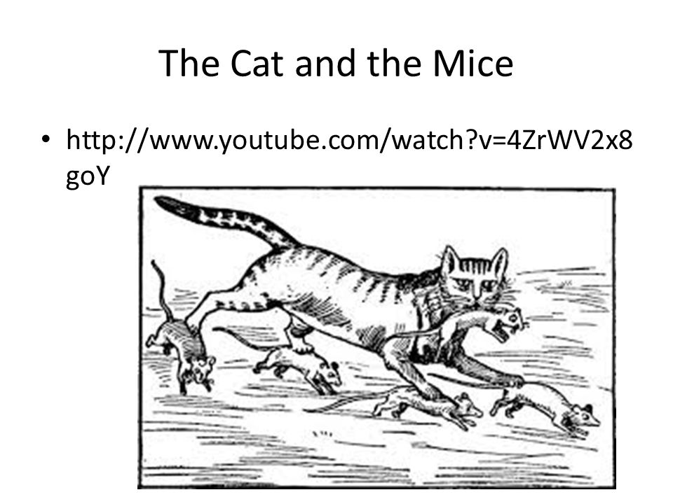 The Cat and the Mice http://www.youtube.com/watch v=4ZrWV2x8 goY