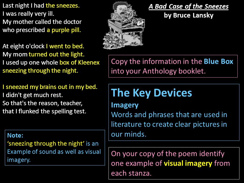 A Bad Case of the Sneezes by Bruce Lansky The Key Devices Imagery Words and phrases that are used in literature to create clear pictures in our minds.