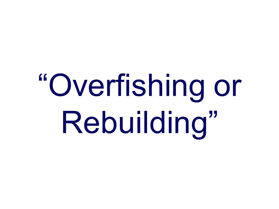 Overfishing or Rebuilding