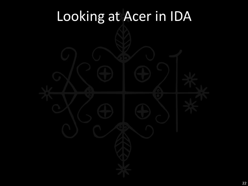 Looking at Acer in IDA 22