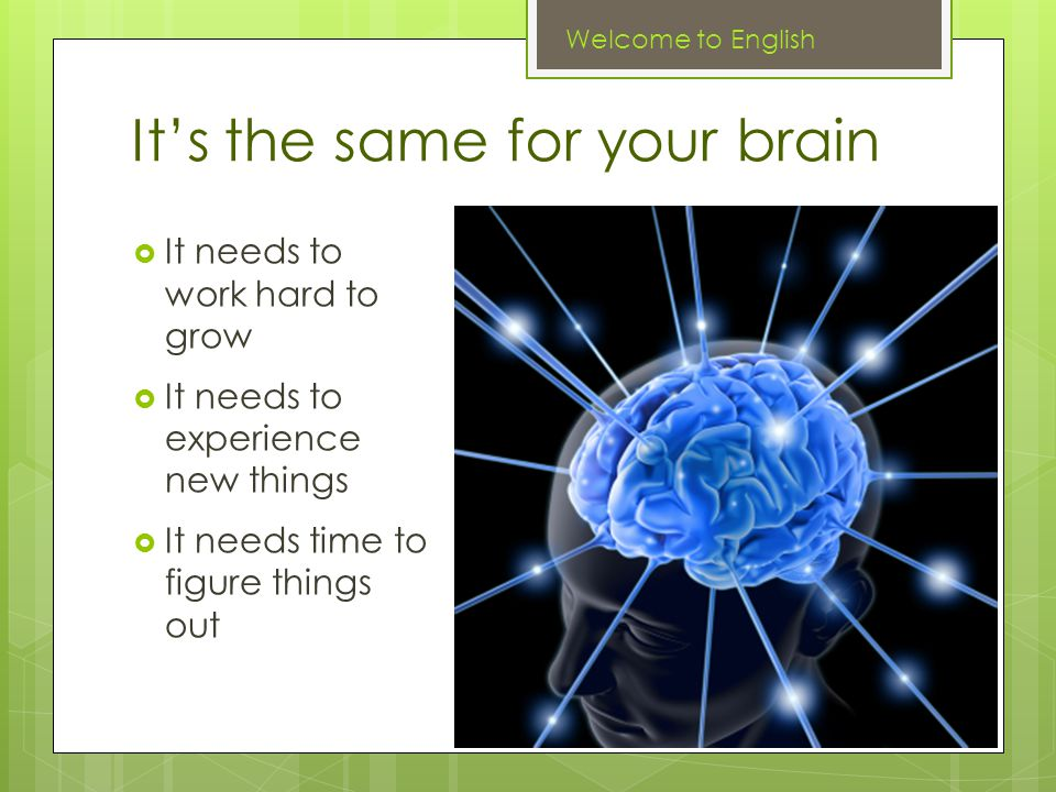 It's the same for your brain  It needs to work hard to grow  It needs to experience new things  It needs time to figure things out Welcome to English