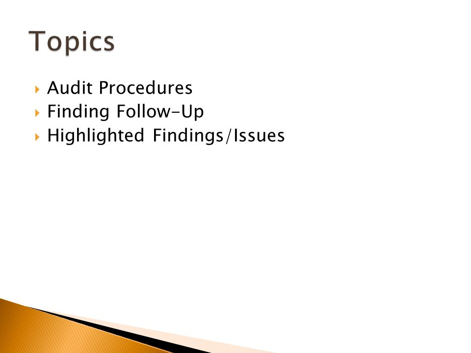  Audit Procedures  Finding Follow-Up  Highlighted Findings/Issues