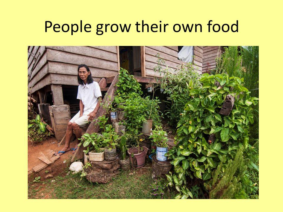 People grow their own food