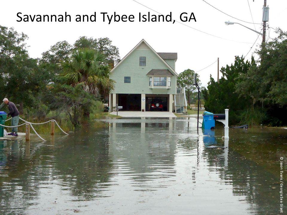 Blah, blah, add photo credit (Jason Evans) Savannah and Tybee Island, GA © Jason Evans / Georgia Sea Grant