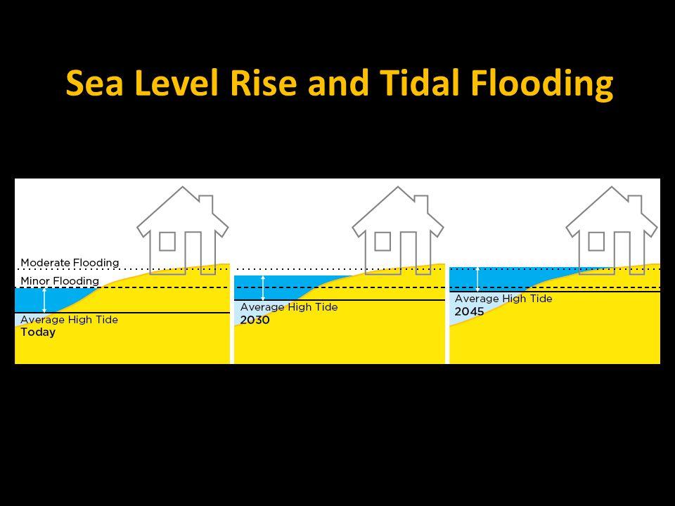 Sea Level Rise and Tidal Flooding