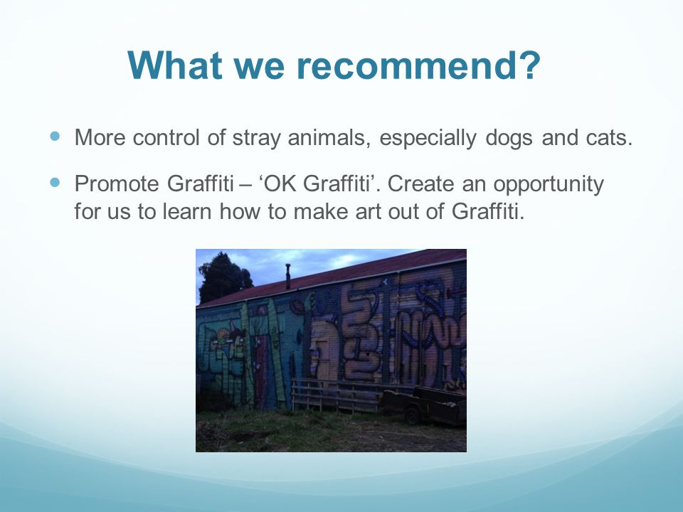 What we recommend. More control of stray animals, especially dogs and cats.