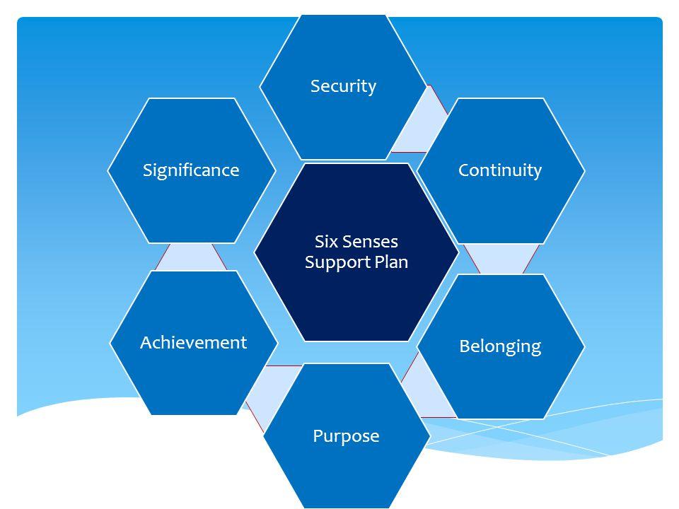 Six Senses Support Plan SecurityContinuityBelongingPurposeAchievementSignificance