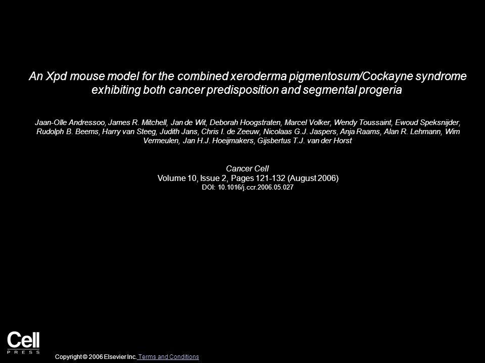 Figure 1 Cancer Cell 2006 10, 121-132DOI: (10.1016/j.ccr.2006.05.027) Copyright © 2006 Elsevier Inc.
