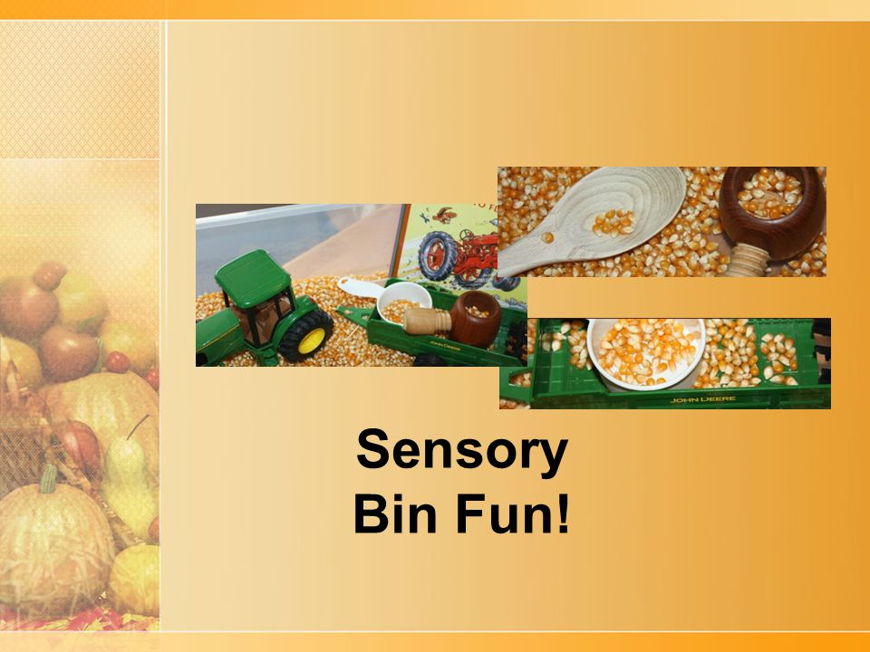 Sensory Bin Fun!