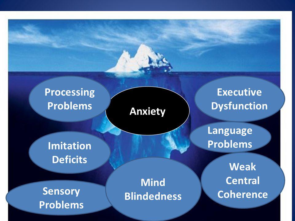 Processing Problems Executive Dysfunction Sensory Problems Imitation Deficits Weak Central Coherence Mind Blindedness Language Problems