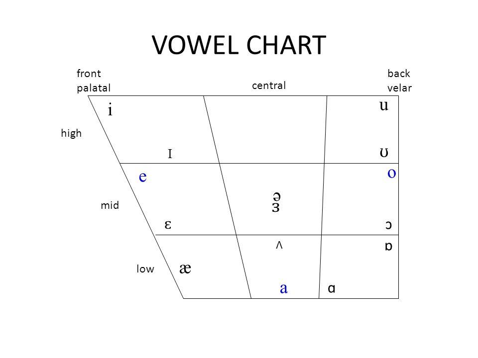 VOWEL CHART i I e ɛ ə Λ a o u ʊ æ ɒ ɑ ɔ front palatal central back velar high mid low ɜ
