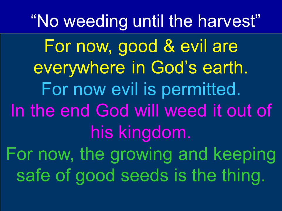 For now, good & evil are everywhere in God's earth. For now evil is permitted. In the end God will weed it out of his kingdom. For now, the growing an