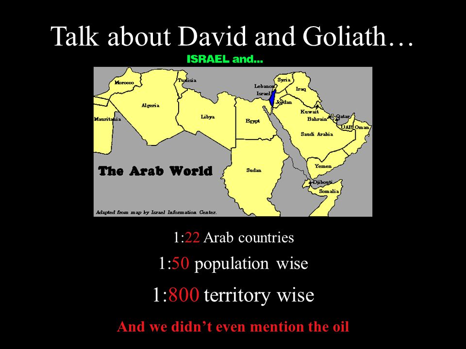 True or False. The Arabs are the David in this conflict.