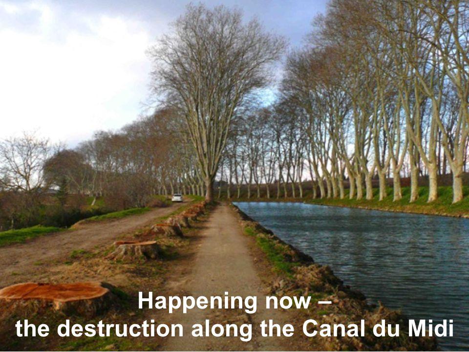 Happening now – the destruction along the Canal du Midi