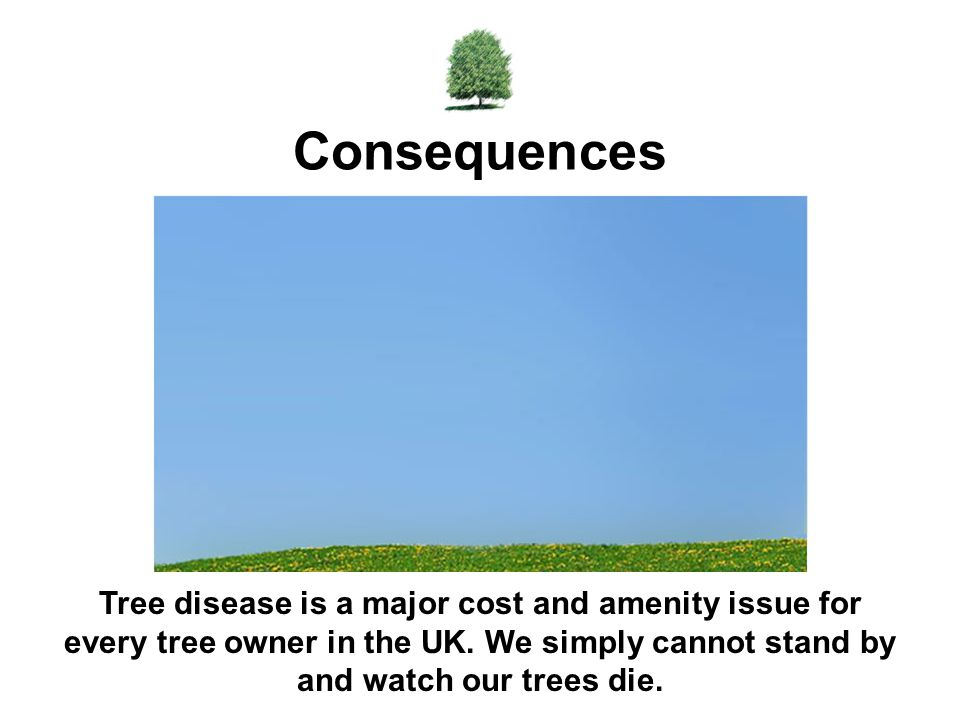 Tree disease is a major cost and amenity issue for every tree owner in the UK.