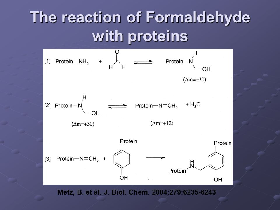 The reaction of Formaldehyde with proteins Metz, B. et al. J. Biol. Chem. 2004;279:6235-6243