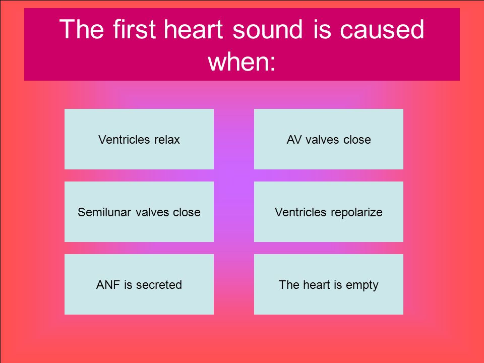 The first heart sound is caused when: Ventricles relax ANF is secretedThe heart is empty Ventricles repolarize AV valves close Semilunar valves close