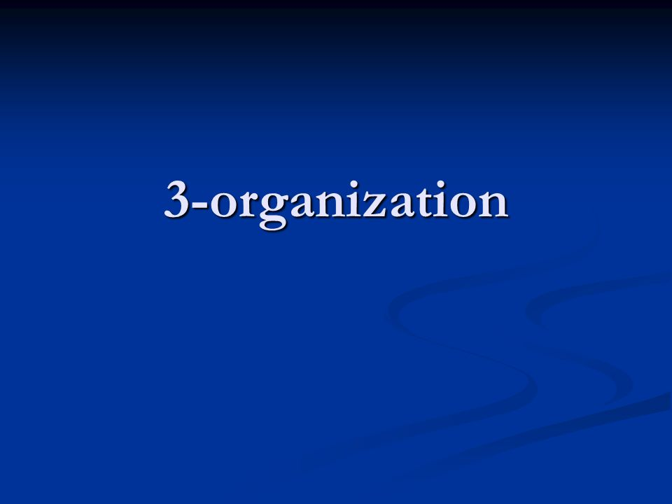 3-organization