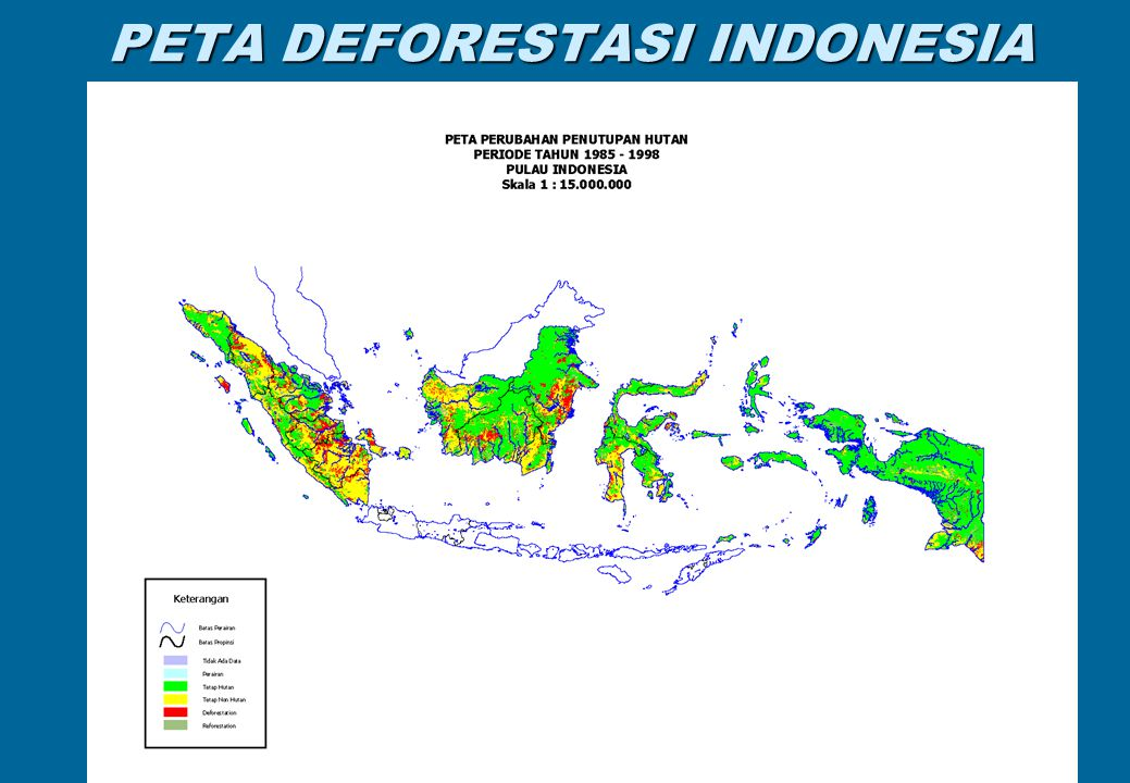 PETA DEFORESTASI INDONESIA 4