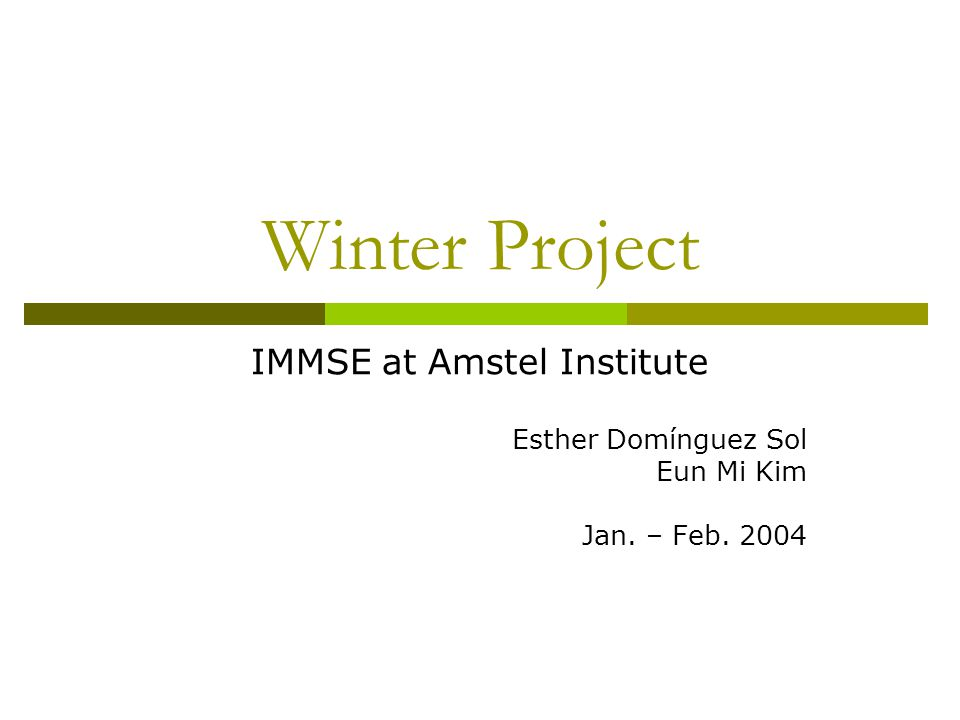 Winter Project IMMSE at Amstel Institute Esther Domínguez Sol Eun Mi Kim Jan. – Feb. 2004