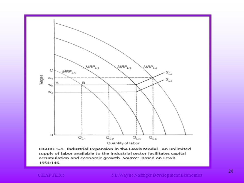 CHAPTER 5©E.Wayne Nafziger Development Economics 28