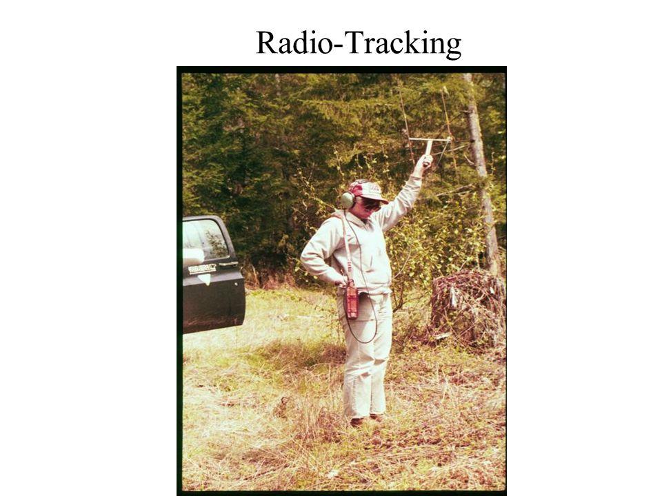 Radio-Tracking