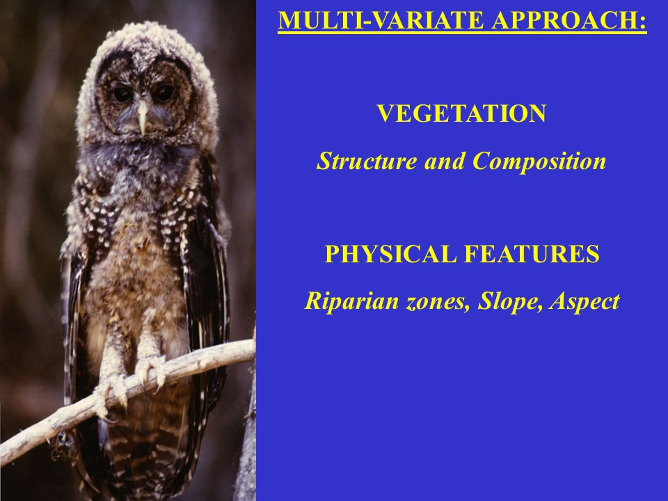 MULTI-VARIATE APPROACH: VEGETATION Structure and Composition PHYSICAL FEATURES Riparian zones, Slope, Aspect.