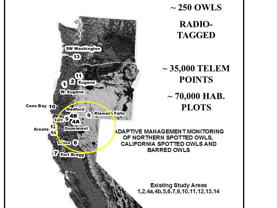 ~ 250 OWLS RADIO- TAGGED ~ 35,000 TELEM POINTS ~ 70,000 HAB. PLOTS