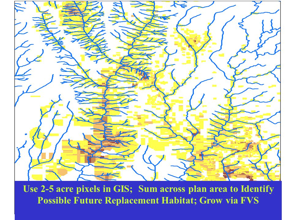 Use 2-5 acre pixels in GIS; Sum across plan area to Identify Possible Future Replacement Habitat; Grow via FVS.