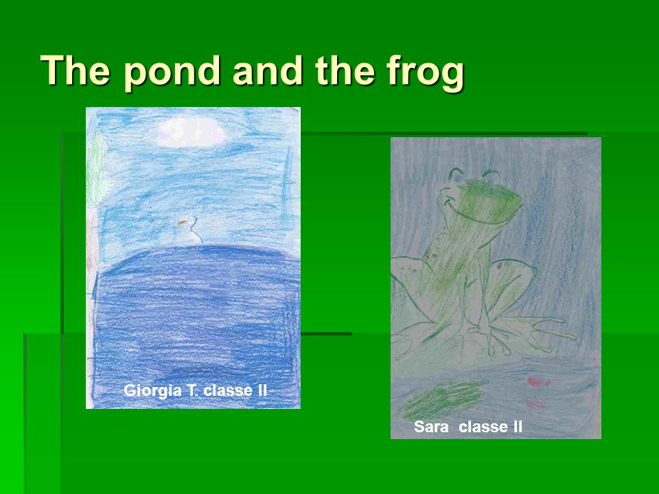 The pond and the frog Giorgia T. classe II Sara classe II
