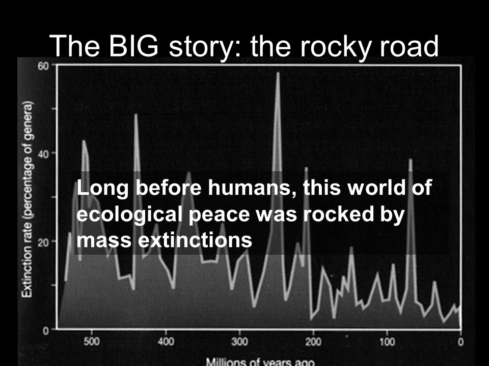 The BIG story: the rocky road Long before humans, this world of ecological peace was rocked by mass extinctions