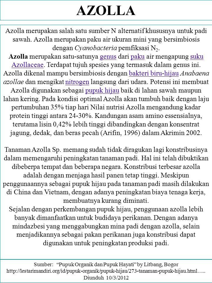 AZOLLA Azolla merupakan salah satu sumber N alternatif khususnya untuk padi sawah. Azolla merupakan paku air ukuran mini yang bersimbiosis dengan Cyan