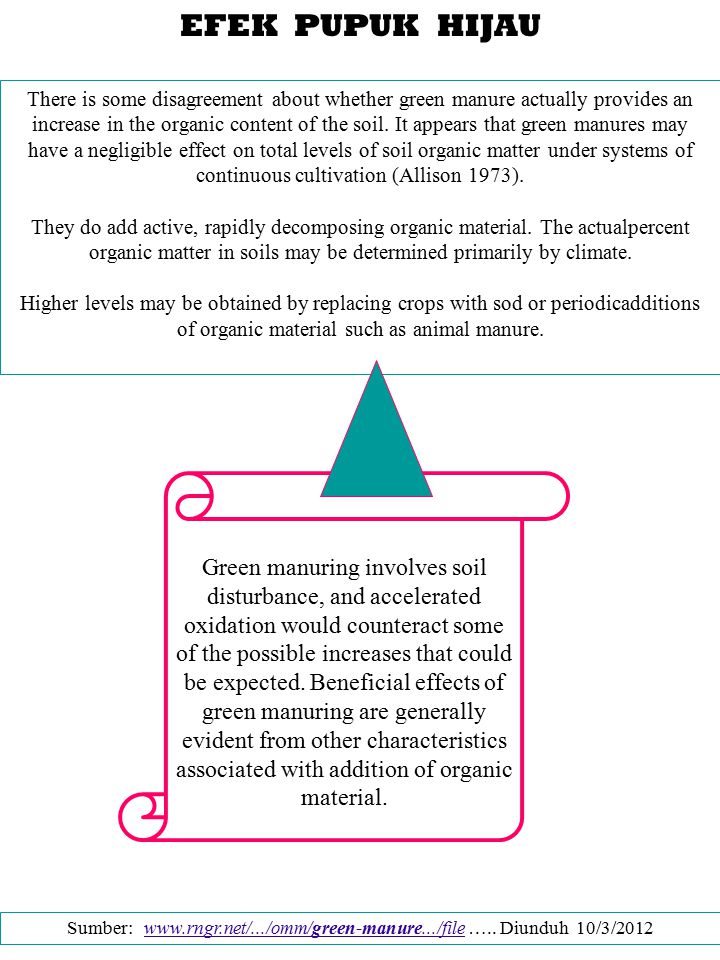 EFEK PUPUK HIJAU There is some disagreement about whether green manure actually provides an increase in the organic content of the soil. It appears th