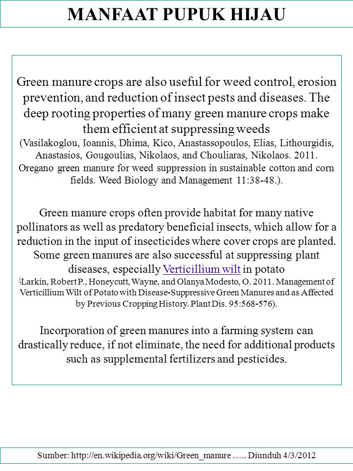 MANFAAT PUPUK HIJAU Green manure crops are also useful for weed control, erosion prevention, and reduction of insect pests and diseases. The deep root