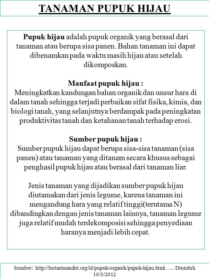 PUPUK HIJAU - TANAMAN PANGAN If you mix green manure crops with food crops, you produce food and manure at the same time.