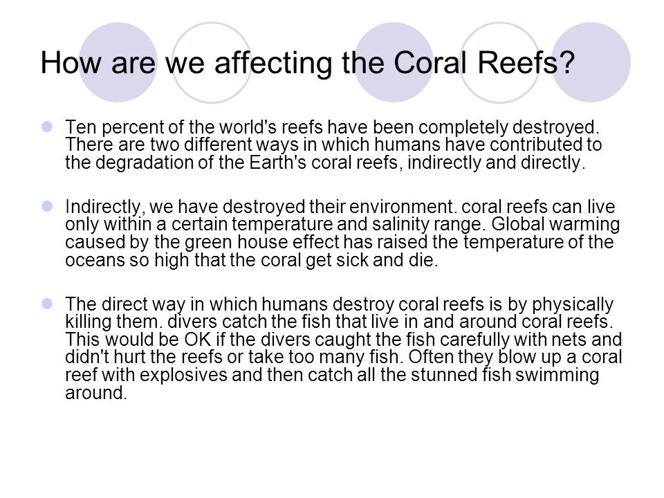 Threats to the Coral Reef Natural Events Hurricanes, typhoons, El Niño, coral-eating organisms, and diseases are natural disasters coral reefs have been facing for millions of years.