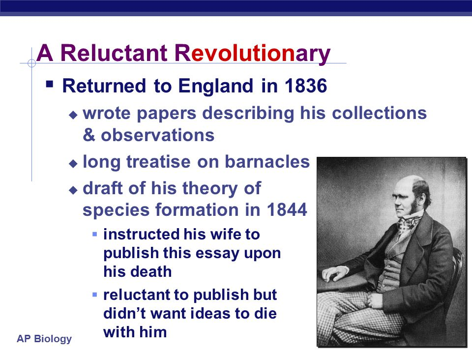 AP Biology In historical context  Other people's ideas paved the path for Darwin's thinking competition: struggle for survival population growth exce