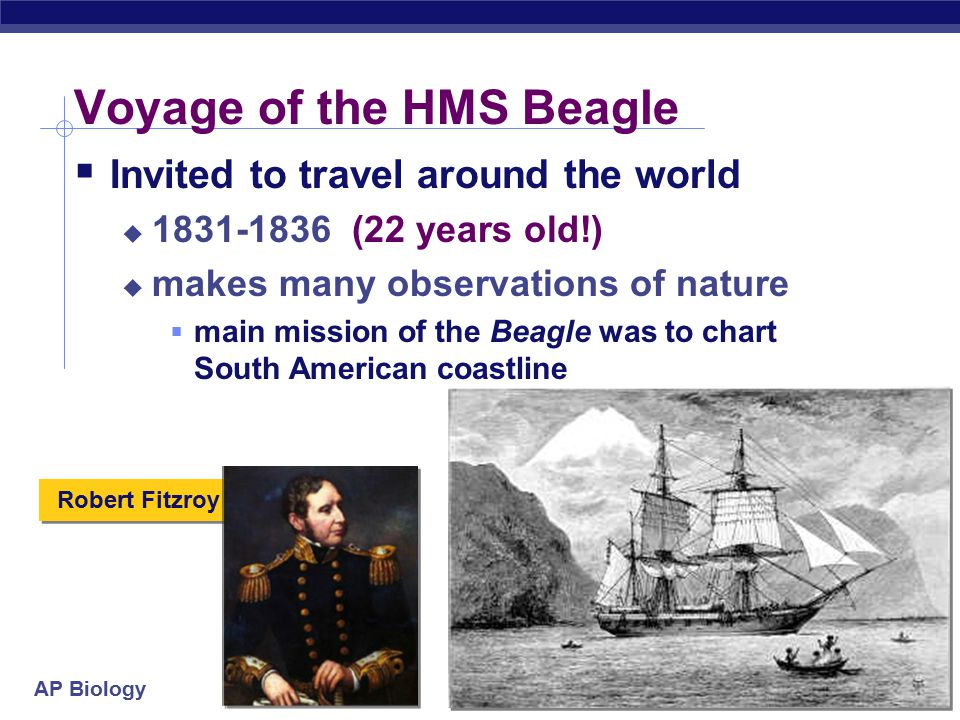 AP Biology Robert Fitzroy Voyage of the HMS Beagle  Invited to travel around the world  1831-1836 (22 years old!)  makes many observations of nature  main mission of the Beagle was to chart South American coastline