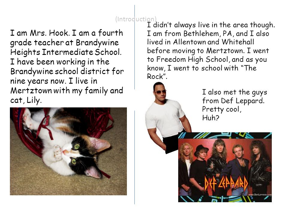 (Introduction) I am Mrs. Hook. I am a fourth grade teacher at Brandywine Heights Intermediate School. I have been working in the Brandywine school dis