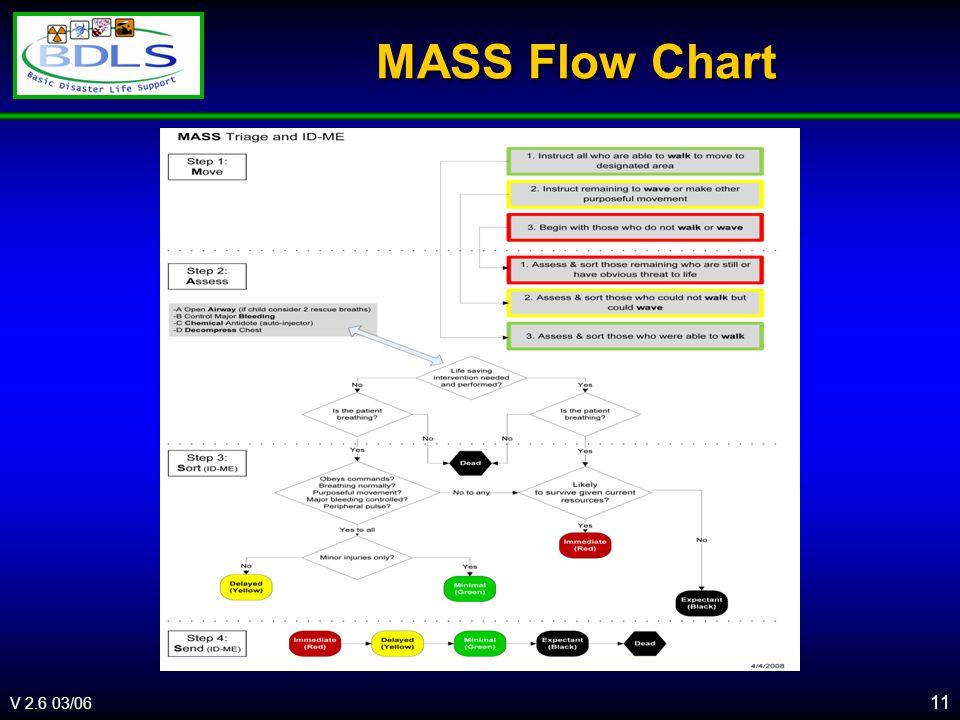 V 2.6 03/06 MASS Flow Chart 11