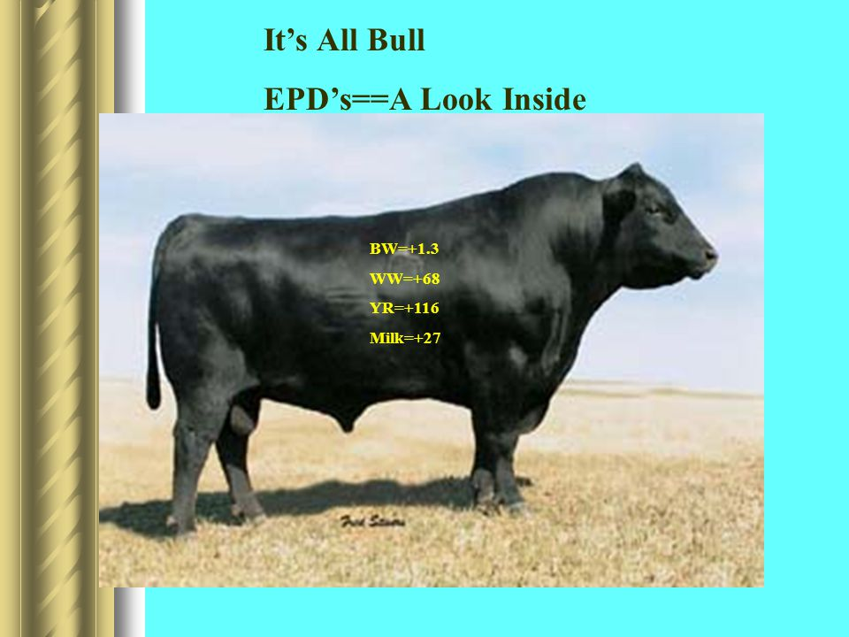 BW=+1.3 WW=+68 YR=+116 Milk=+27 It's All Bull EPD's==A Look Inside