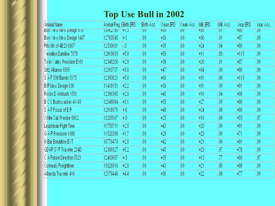 Top Use Bull in 2002