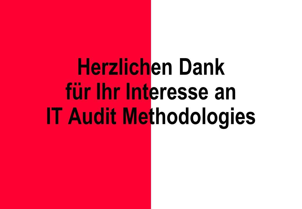 Herzlichen Dank für Ihr Interesse an IT Audit Methodologies