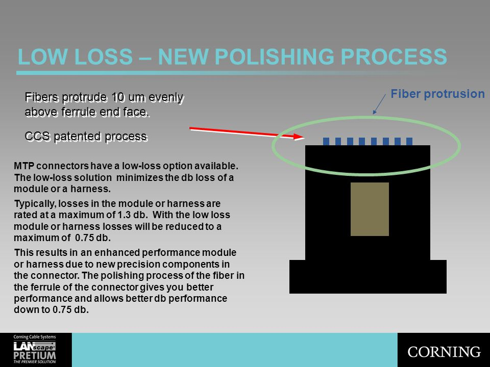 LOW LOSS – NEW POLISHING PROCESS Fibers protrude 10 um evenly above ferrule end face. CCS patented process Fibers protrude 10 um evenly above ferrule